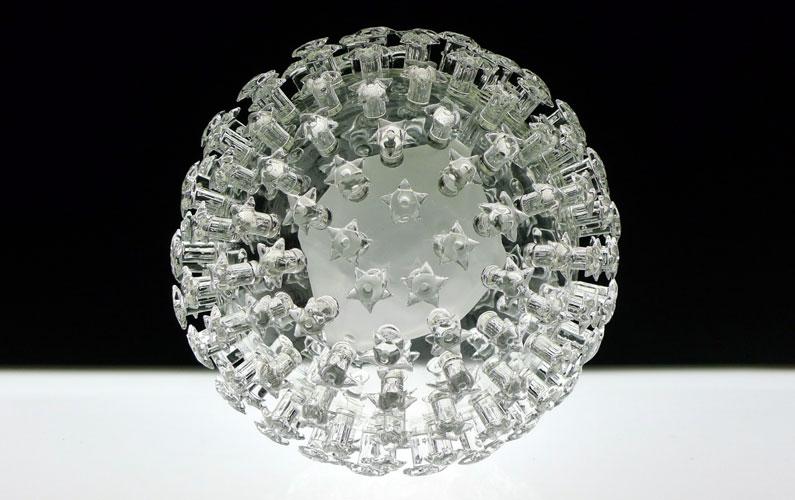 papillomaforweb